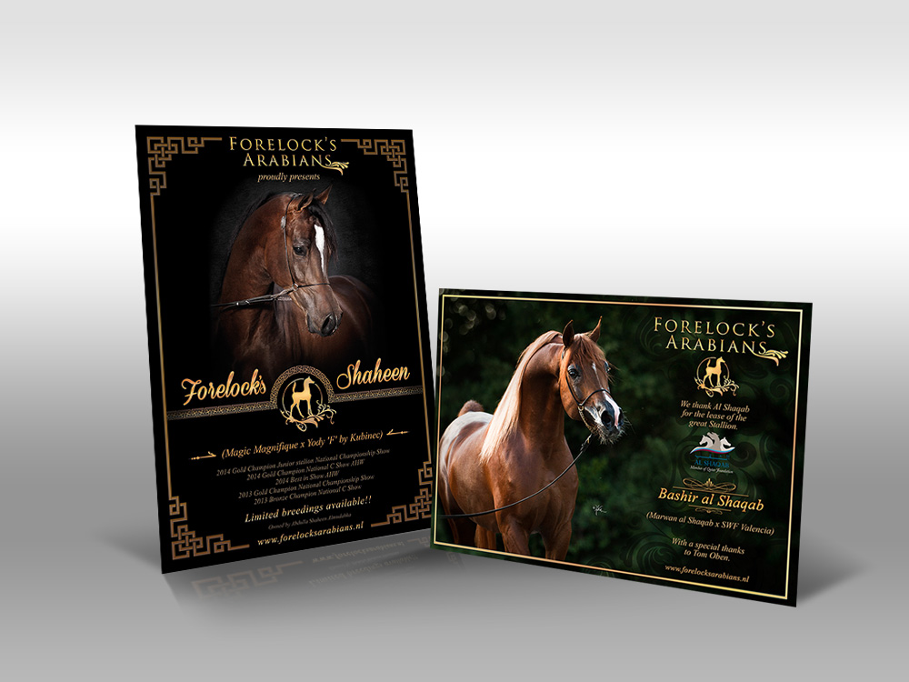Flyer Forelock's Arabians